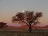 Mond Aufgang Gemsbokvlakte